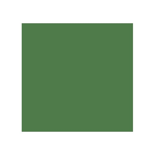 Acrylic paint moss green