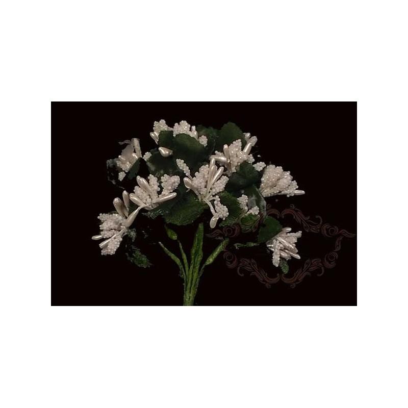 Florecitas blancas