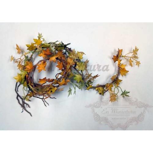 Enredadera de otoño