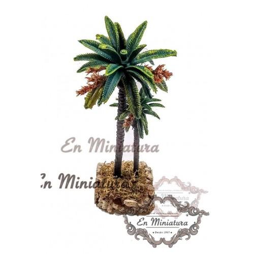 Double palm tree
