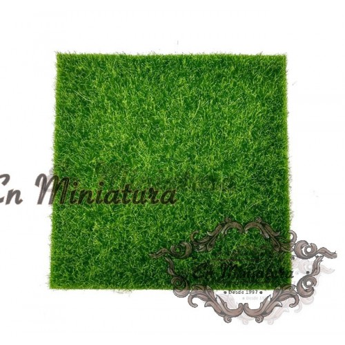 Lawn with grass for models