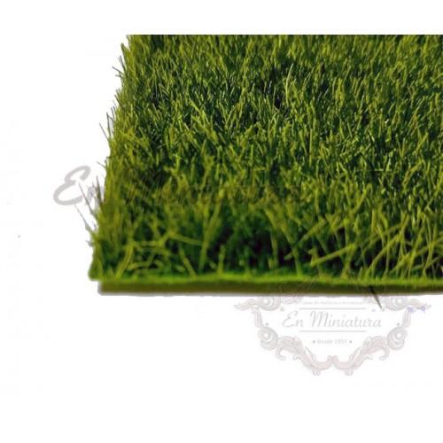 Césped con hierba para maquetas