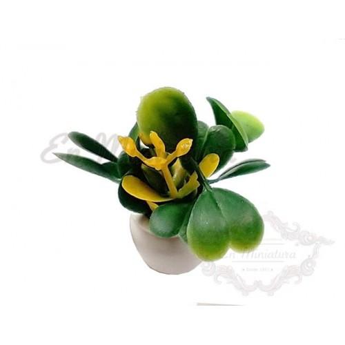 Maceta con flores amarillas