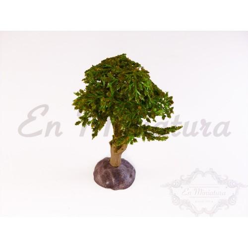 Arbol copa verde