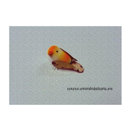 Pájaro en miniatura