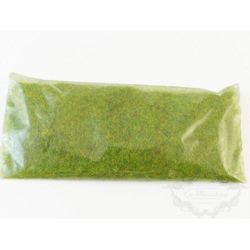 Musgo verde en polvo