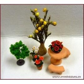 Jardín y Plantas y Flores